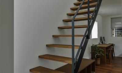 プライバシーを確保しながら光を取り入れる美術館のような家(石部東の家) (ストリップ階段)