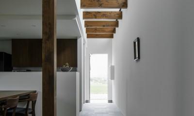 廊下|プライバシーを確保しながら光を取り入れる美術館のような家(石部東の家)
