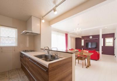 家族3人とワンちゃんが心地よく暮らす、戸建リノベーション (キッチン)