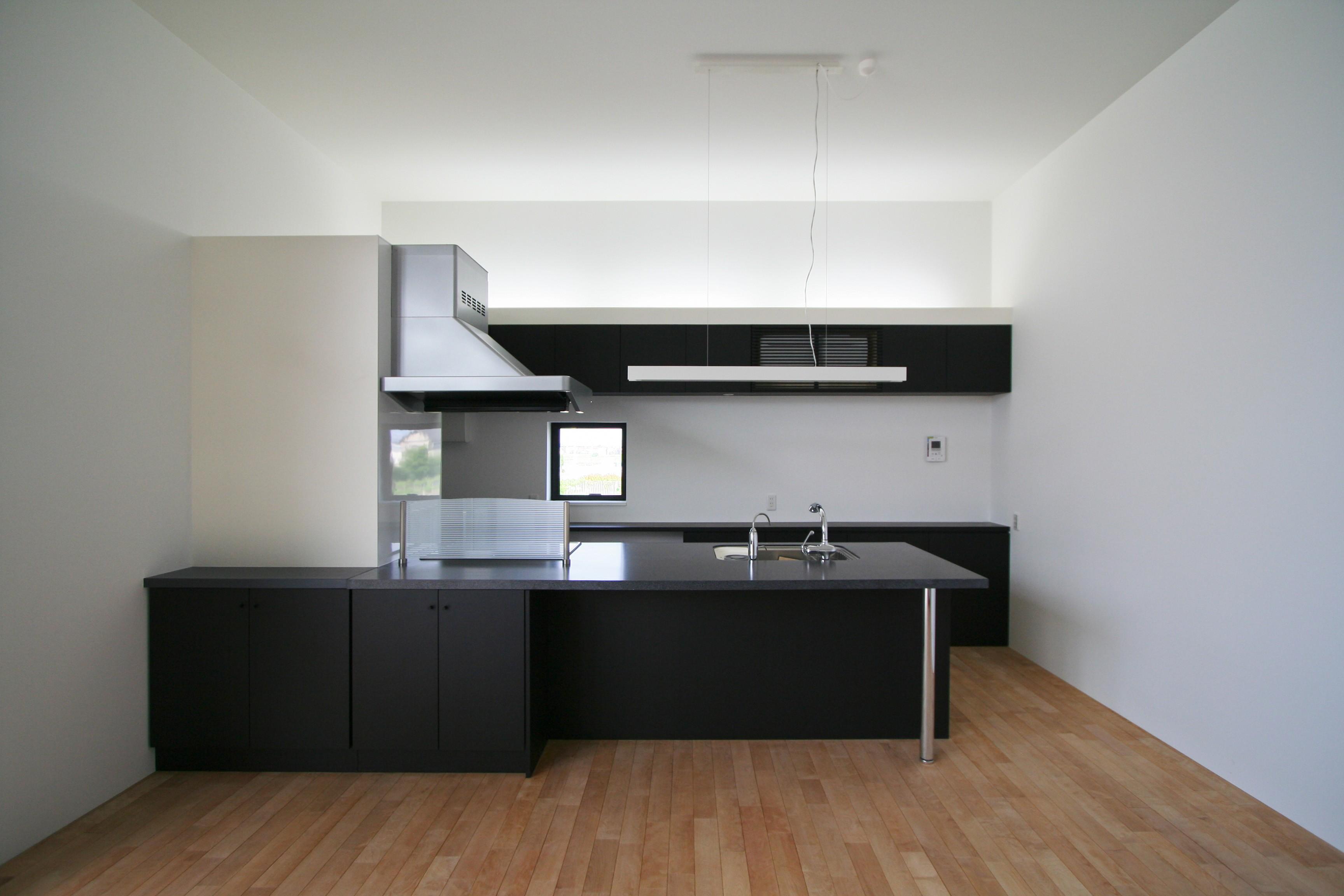 リビングダイニング事例:キッチン(ミニマルデザインのハコ型の家)