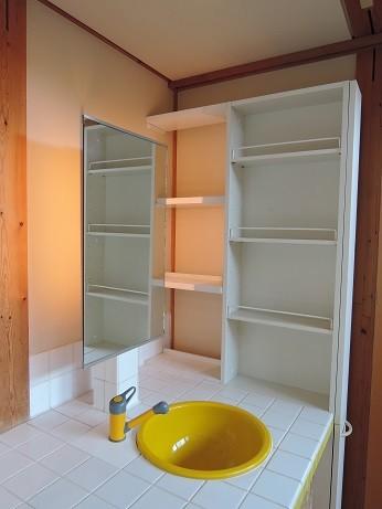 家族のびのび大空間:自然素材の家 (洗面化粧台)