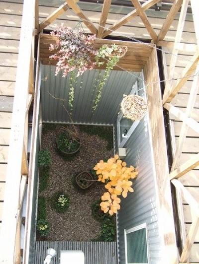 中庭 (家族のびのび大空間:自然素材の家)