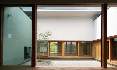 喜多町の家 (中庭に繋がるリビング)