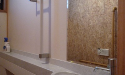 平屋に住まう:夫婦二人に ちょうどいいシンプルな住まい (トイレ:手すり付ひじ置きカウンター + 手洗い器 バリアフリー対策)