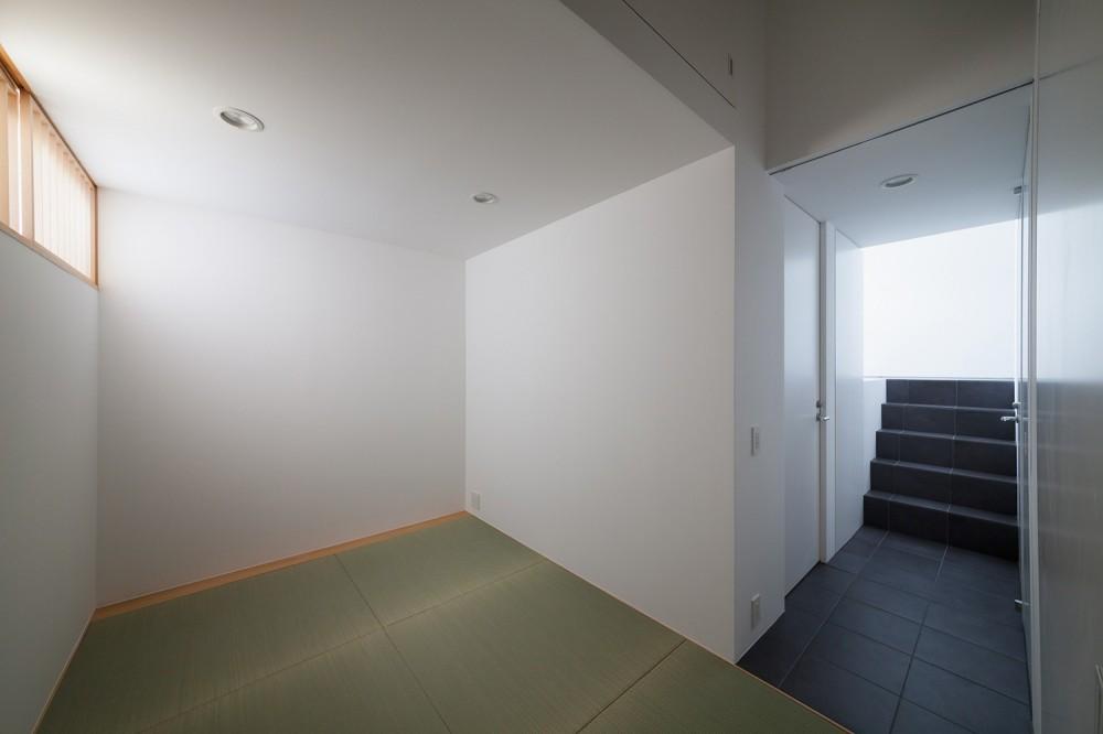 東玉川の住宅 (地下和室)