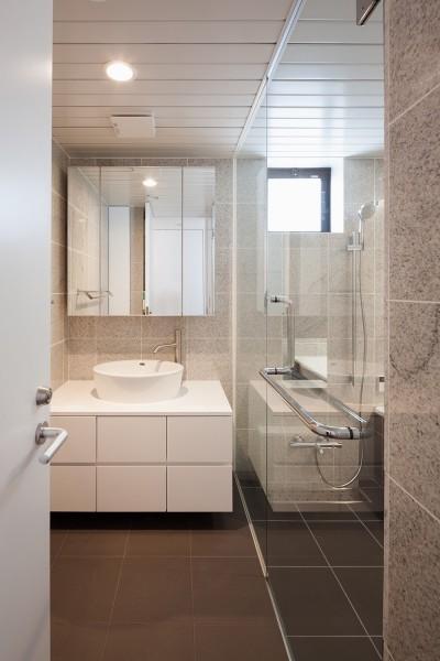 洗面脱衣室 (東玉川の住宅)