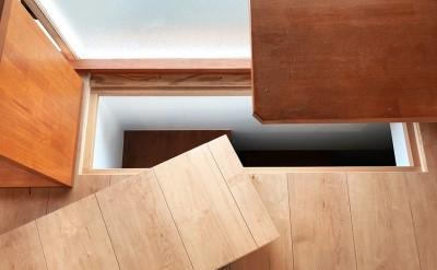ペットの猫が自由に上下階を行き来できる穴 (G阿佐ヶ谷)