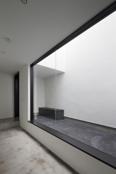 玄関光庭に開く趣味室 (さいたまの旗竿敷地の家 OUCHI-21)