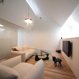 さいたまの旗竿敷地の家 OUCHI-21 (犬と暮らすリビングの様子)