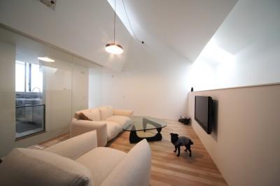 犬と暮らすリビングの様子 (さいたまの旗竿敷地の家 OUCHI-21)
