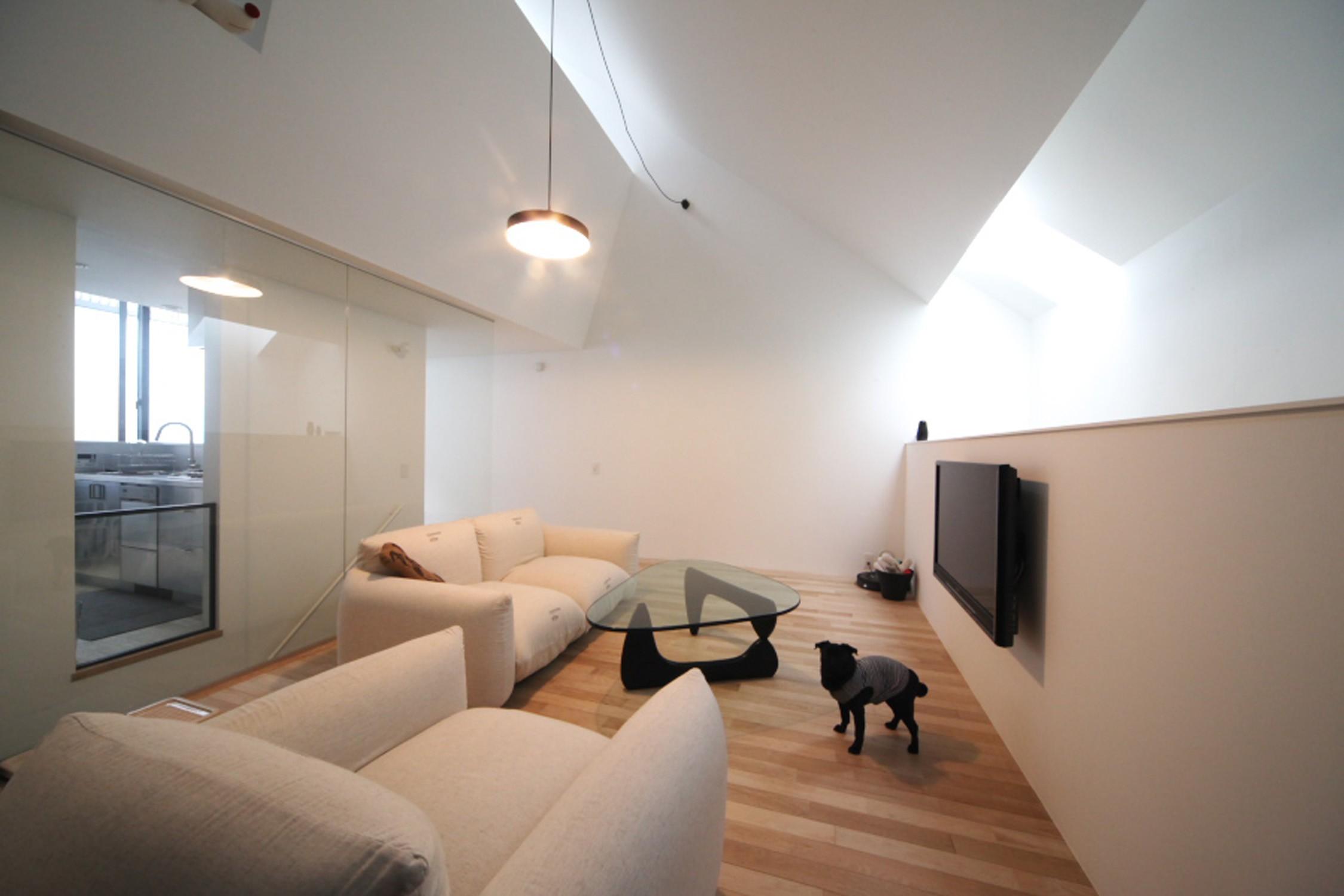 リビングダイニング事例:犬と暮らすリビングの様子(さいたまの旗竿敷地の家 OUCHI-21)