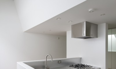 ステンレスキッチン|さいたまの旗竿敷地の家 OUCHI-21
