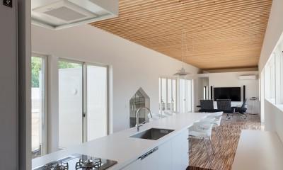 キッチン|羽鳥の平屋