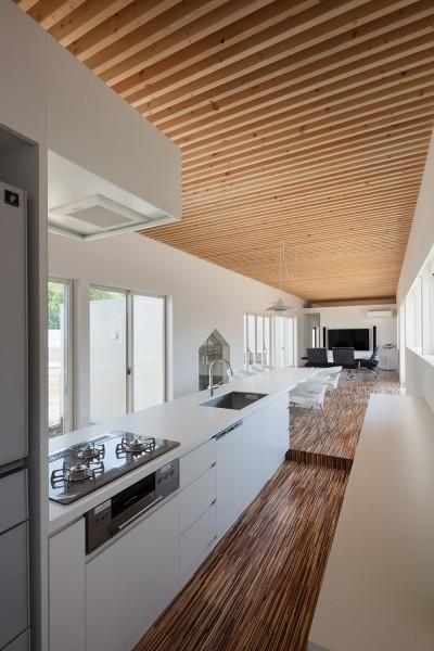 キッチン (羽鳥の平屋)