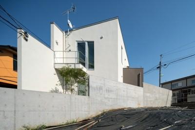 赤堤の家 (外観)