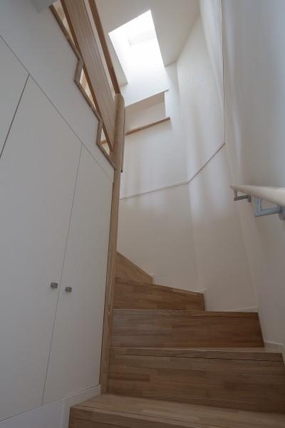 階段 (小規模デザイナーズアパートメント 三茶の集住)