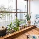 アウトドアリビングの暮らしを楽しめる家の写真 窓際には観葉植物コーナー