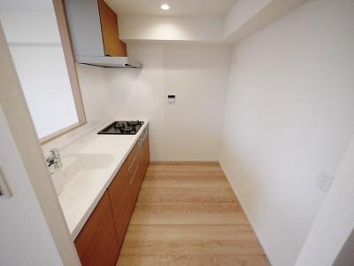 キッチン (マイナスイオンの壁)