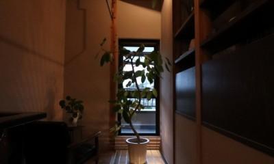 自然素材と色彩を楽しむ家 (ライティング(ランドリースペース))