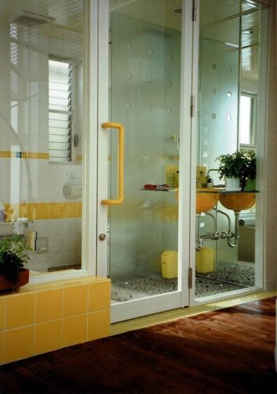 サニタリー空間 (広く魅せる工夫を凝らす狭小住宅:鉄骨構造の小さい住宅)
