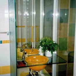 広く魅せる工夫を凝らす狭小住宅:鉄骨構造の小さい住宅 (洗面・手洗い)