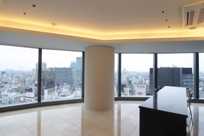 扇型のLDK (高層階の眺望を楽しむ扇型リビングの家)