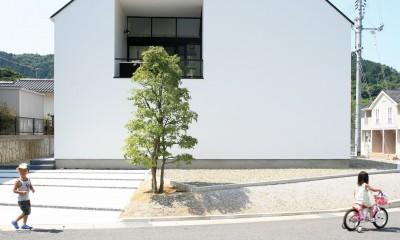 デザイン住宅外観いろいろ (鳥取のミニマルデザインの家 OUCHI-02)