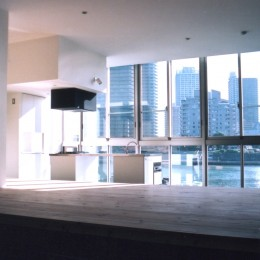 川の側の家〜おおきな開口と段差のある空間〜 (大きな開口から隅田川をみる)