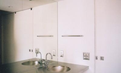川の側の家〜おおきな開口と段差のある空間〜 (ステンレスの洗面台)