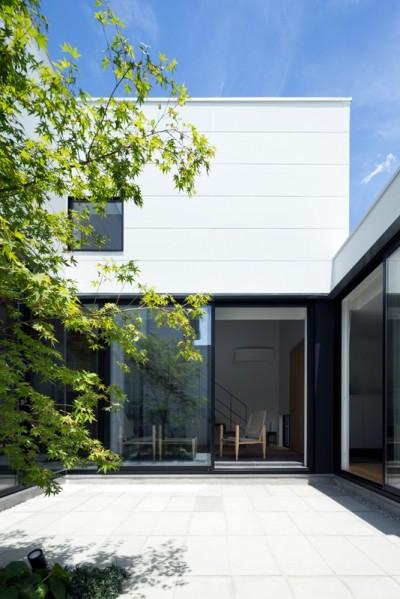 茅ヶ崎の家〜旗竿敷地に建つ三つの庭を持つ家 (モミジが映える白い中庭)