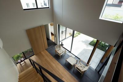 茅ヶ崎の家〜旗竿敷地に建つ三つの庭を持つ家 (リビングを見下ろし)