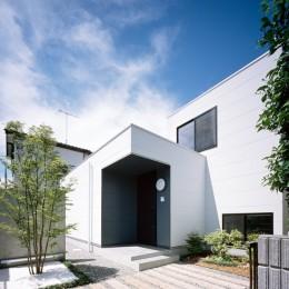 茅ヶ崎の家〜旗竿敷地に建つ三つの庭を持つ家 (坪庭とシンボルツリーのあるエントランス)