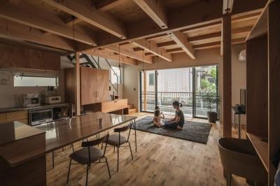 外と繋がるリビング (収納家具にプラスαの機能を付けた収納をテーマにした家(野路の家))