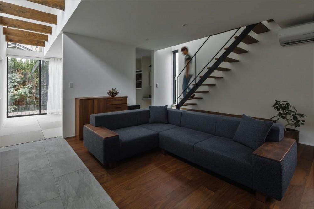 プライバシーを確保しながら光を取り入れる美術館のような家(石部東の家) (リビング階段とリビング)