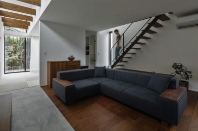 リビング階段とリビング (プライバシーを確保しながら光を取り入れる美術館のような家(石部東の家))