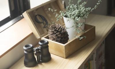 観葉植物|キッチンをLDKの中心に家族が繋がる家(野洲の家リノベーション)