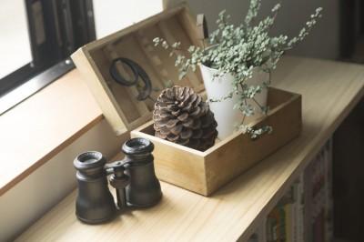 観葉植物 (キッチンをLDKの中心に家族が繋がる家(野洲の家リノベーション))