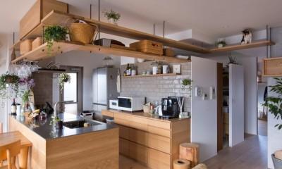 猫と植栽と家具をテーマにしたマンションリノベ(におの浜マンションリノベーション) (キッチン)