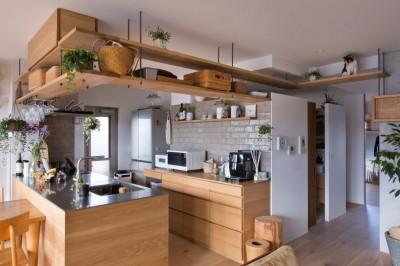 キッチン (猫と植栽と家具をテーマにしたマンションリノベ(におの浜マンションリノベーション))
