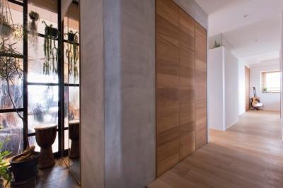 廊下 (猫と植栽と家具をテーマにしたマンションリノベ(におの浜マンションリノベーション))