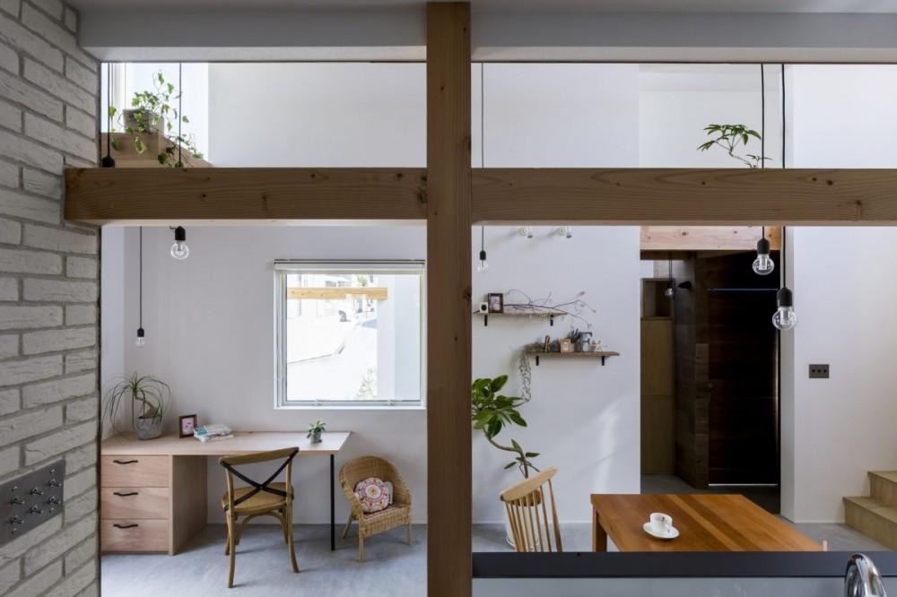芝生丘のあるプライバシーを確保しつつ開く窓の家(宇治の家) (ダイニング)