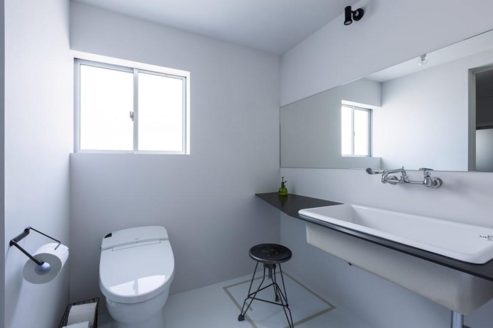 倉庫をリノベーションしたかのような新築の家(石部の家) (トイレ)