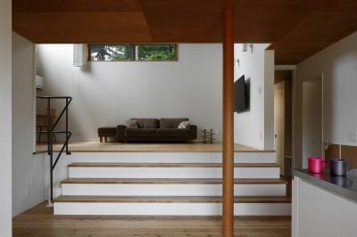 豊橋の家〜神社の緑を借景としたスキップフロアの家〜 (神社の緑を借景としたスキップフロアの家)
