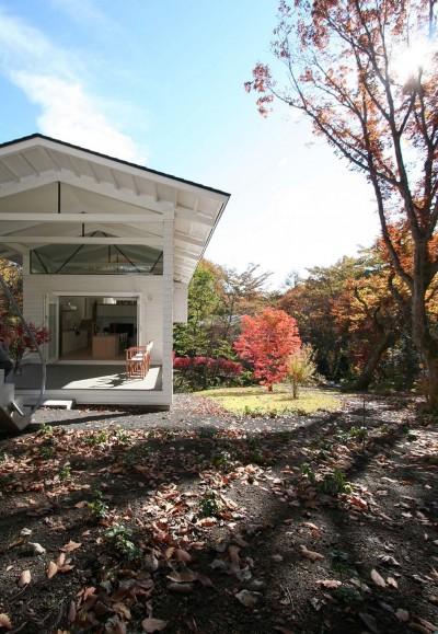 ランドスケープ (Villa Stella (autumn))
