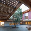 荻窪の住宅の写真 庭