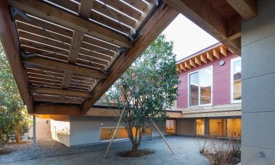 荻窪の住宅 (庭)