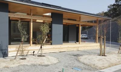 外観 庭|水平に広がる大きな軒と縁側のある家(阿久比の家)