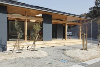 外観 庭 (水平に広がる大きな軒と縁側のある家(阿久比の家))