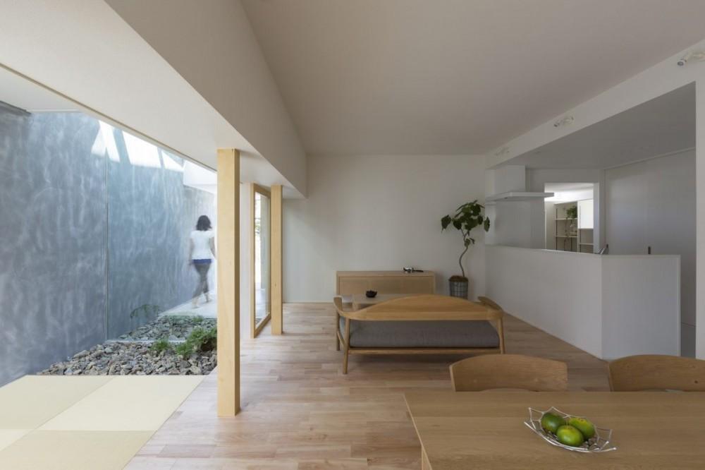 ALTS DESIGN OFFICE「プライバシーを確保しつつ開放的な旗竿地に建つ家(草津の家)」