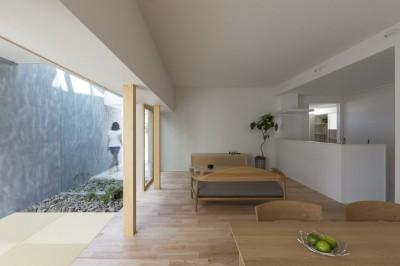 プライバシーを確保しつつ開放的な旗竿地に建つ家(草津の家) (リビングダイニング)